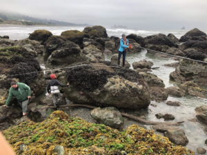 Citizens of the Tolowa Dee-ni' Nation conducting rocky intertidal monitoring on California's North Coast. Photo: Tribal Intertidal Digital Ecological Surveys (TIDES) project.